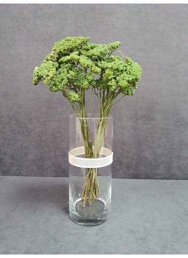 Kuru Çiçek Deposu Kuru Çiçek Şemsiye Otu Demeti 45 Cm Bordo Yeşil